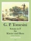 Simonetti/ Tomesini: Band XXV – Giovanni Paolo Tomesini